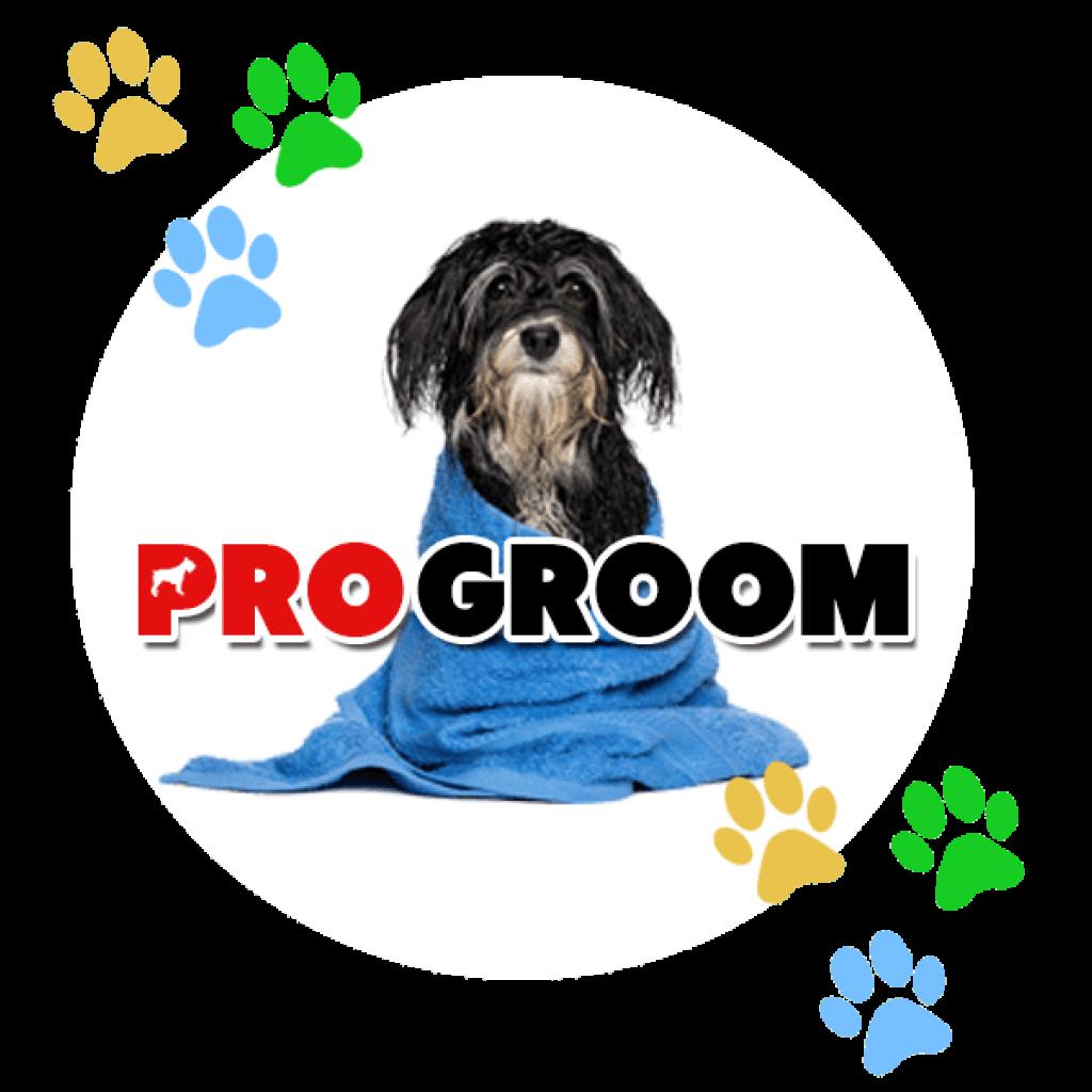 progroomtopic-min